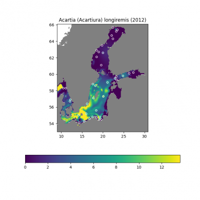 Map showing the abundance of Acartia longiremis in the Baltic in 2012